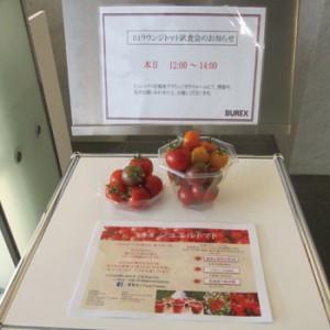 トマト試食会